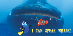 Dory would love Project Variance